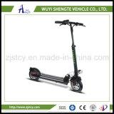 36V 10 pollici - motorino della rotella di alto potere due elettrico