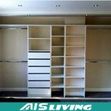 Выполненная на заказ прогулка верхнего сегмента мебели в шкафе шкафа (AIS-W66)