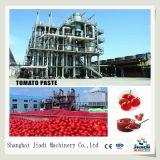 Máquina de processamento da pasta de tomate/linha de produção/planta