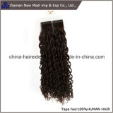 Extensions bouclées indiennes de bande de qualité de cheveux humains meilleures