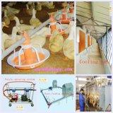 デザインおよび構築が付いている家禽の小屋の自動機械装置