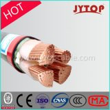 0.6/1 Kv 3+1 de Kabel van de Isolatie van de Kern XLPE, de Kabel van het Koper van de Macht van de Schede PVC/PE