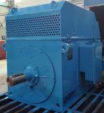 Motor asíncrono clasificado grande de la CA del alto voltaje de Ykk Sereies
