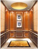 Il sig. dell'elevatore dell'elevatore del passeggero & lo specchio di LMR hanno inciso Aksen Ty-K113