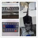 Ribete que bisela de cristal vertical de la fuente china del fabricante y máquina pulidora