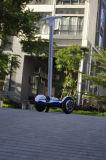 손잡이 2 바퀴 Hoverboard 전기 기동성 스쿠터를 가진 전기 스쿠터