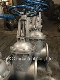 Form-Stahl API-600 flanschte Absperrschieber