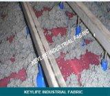 Tissu de presse de ceinture dans le type presse de ceinture pour le traitement de résidu de manioc