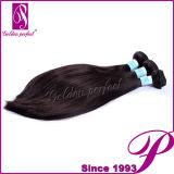 Virgin brasileiro favorito Remy das extensões do cabelo humano dos compradores