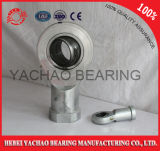 Many Sizes를 가진 Phs Series End Joint Bearings