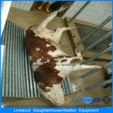 プレハブの家のデザインおよび構築が付いている家禽耕作の家の肉処理機械