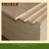E0 madera contrachapada comercial usada de interior del pegamento 18m m