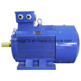 Асинхронный двигатель 3 участков (серия Y2) для индустрии