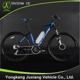 2015 heißes Sale Electric Bicycle mit En15194