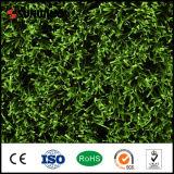 Mini Groen PE van de Aard van het Gebied van de Voetbal Professioneel Kunstmatig Gras