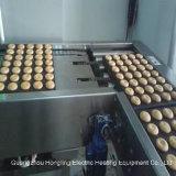 Forno a tunnel del forno a tunnel, riga di produzione alimentare, linea di produzione della torta del pane. Fabbrica reale dal forno a tunnel del diesel 1979