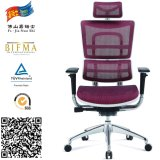 Bad Back Pain를 위한 직접 Supplier Luxury Mesh Ergonomic Chair