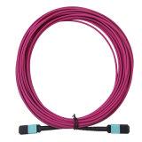 MPO Plus-MPO le cavalier de fibre optique positif