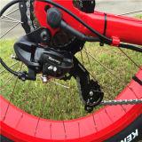 48V 500W 모래 뚱뚱한 타이어 숙녀를 위한 전기 산악 자전거