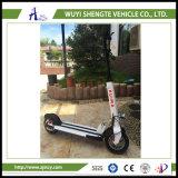 2.二重中断Shengteの電気スクーター