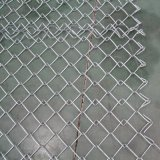 전기판과 Hot Dipped Galvanzied Galvanized Chain Link Mesh