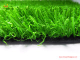 Смотреть природы лужайки верхнего качества искусственний