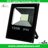 Competitive Price (F100W*-B)를 가진 SMD LED Flood Light