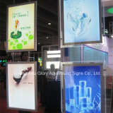 Arylic que hace publicidad del rectángulo ligero cristalino del LED