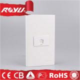 1つの一団の白い長方形Telの壁のソケット、電気ソケット