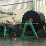 Nastro trasportatore resistente freddo/nastro trasportatore del fabbricato/poliestere che trasporta fascia