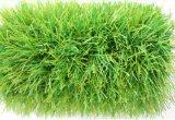 Hoog - het Gras van de Voetbal van de dichtheid Geen Zand en Rubber van de Behoefte
