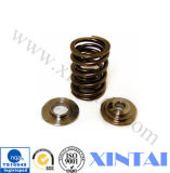 Many su ordinazione Kinds di Steel Coil Compression Spring