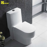 Articles sanitaires de salle de bains de baignoire blanche en deux pièces moderne de vanité (EDA66153)