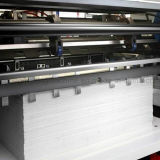 Automatisches Stripping Die Cutting Machine (ES-Serien)