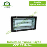 120W 130W 140W最もよいCeiling Induction Tunnel Light Fixture