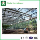 Serra di vetro con la struttura d'acciaio galvanizzata Hot-DIP per Growing di fiore