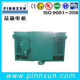 Yシリーズ(IP23)リスケージの高圧電動機