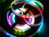Illuminazione impermeabile bianca di natale di RGB della striscia flessibile di DC12V LED