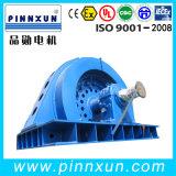 Motor de alta tensão da engrenagem do motor elétrico de anel IP23 deslizante