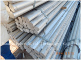 Extrusão de alumínio/de alumínio redonda/barras perfil de Rod