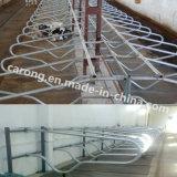 Tenda livre flexível de aço de Galuanised da vaca do equipamento de exploração agrícola do gado