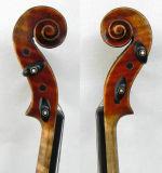 Violon de soliste ! Violon 1716 fabriqué à la main de Messiah de Stradivari ! 1-P Back Violin (RH-501)