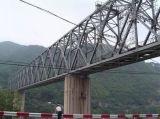 Puente durable de la estructura de acero de la alta calidad de la exportación
