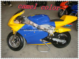 CC Pocket Bike for Kids, 2012 pitbike (ET-PR204)
