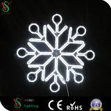옥외 LED 눈송이 크리스마스 불빛