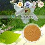Extrait sauvage de lis de 10:1 de 20:1 d'extrait naturel de taux