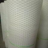 Plastic Netto/Plastic Vlakke Netto van de Draad Mesh/PE
