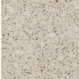 Fantasie kf-216 Oppervlakte 3200*1650mm van de Keuken van de Kleur van het Graniet Stevige de Gebouwde Plak van de Steen van het Kwarts