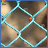 Les ventes d'Anping jaillissent ! ! Treillis métallique de maillon de chaîne de PVC (ISO9001)
