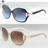Plastik- und oberste neue gute Qualitätsdame Sunglasses